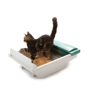 smart scoop automatic litter box reviews