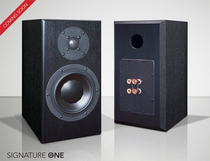 totem model 1 twin review