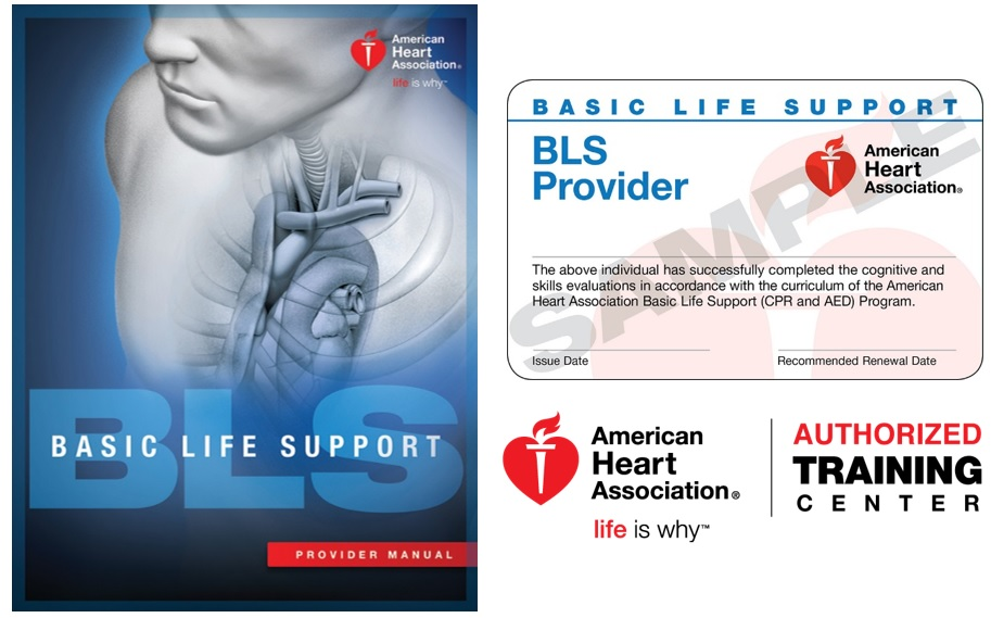 american heart association cpr review